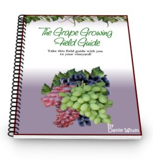 My Grape Vine: The Complete Grape Growers Guide